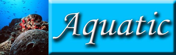 Aquatic Pins