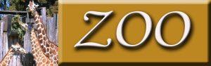Zoo Pins