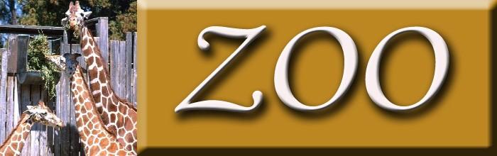 Zoo (Sub)