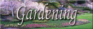 Gardening Pins