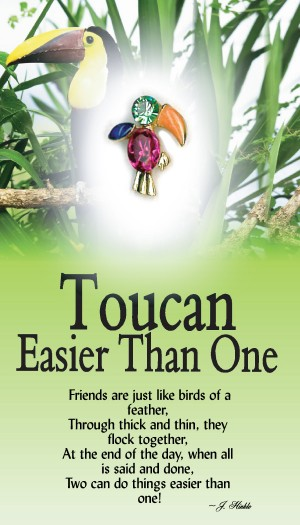 7062 Toucan Better Than One